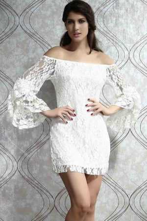 long-sleeve-lace-flare-dress-beautiful-and-elegant_1.jpg